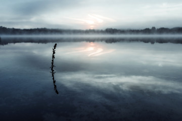 Fog over the lake, twilight over the lake, very dense fog, dawn, blue sky over the lake, the morning comes, the forest reflects in the water, surface water, clear morning sky, gothic, Grim picture