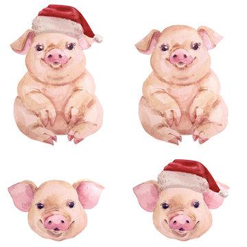 Watercolor cartoon pig christmas new year set
