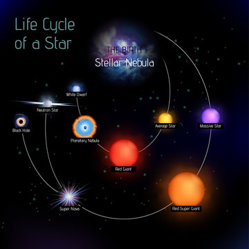 Sun life cycle vector in round shape