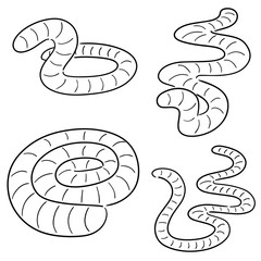 vector set of worms