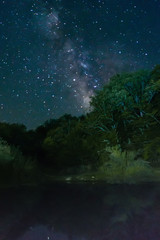 Milky Way over the trees and the lake