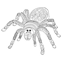 Adult coloring page with Halloween nasty spider
