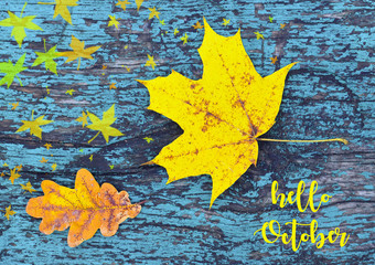 Hello October.Colorful autumn background with autumn leaves on blue colored old wooden texture.Yellow maple and oak tree leaf.Fall season concept.Selective focus.