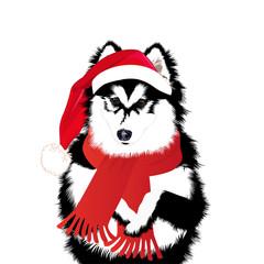 Dog in a funny Santa's red cap. Vector illustration.