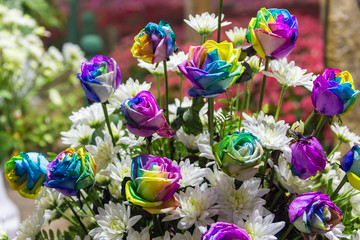 Rainbow roses in a bouquet outdoors