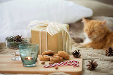 Fototapete - hygge and christmas concept - gift, oatmeal cookies and red tabby cat lying in bed
