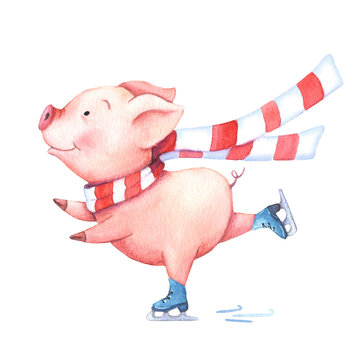 Watercolor pig in scarf on skates.