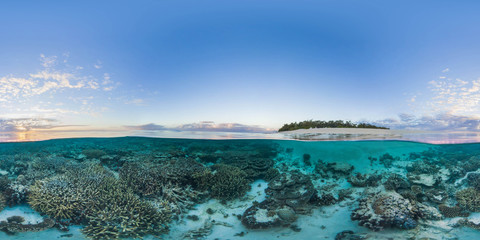 Photo Blinds Coral reefs Island with coral reef