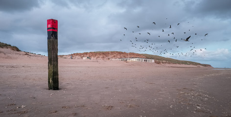 Illustration shows poles typical for the beaches of Texel in the Netherlands. Wall mural
