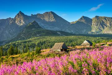 Fototapeten Gebirge Tatra Mountain landscape