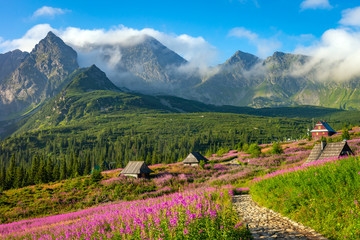 Tatra mountain landscape Fototapete