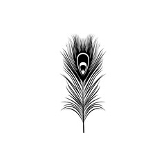 vector peacock feather