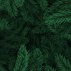Background Christmas tree branches. Festive Xmas border of green branch of pine.