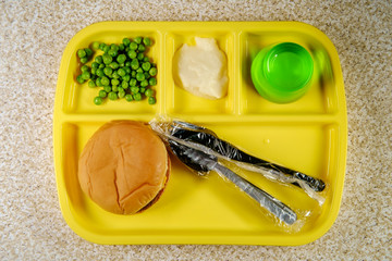 Foto auf Leinwand Sortiment School Lunch Tray Cheeseburger