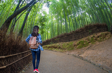 Beautiful woman with backpack in Sagano bamboo in arashiyama,Japan