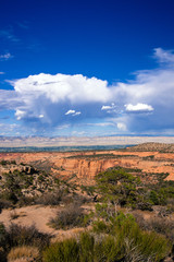 Expansive view of the canyons, plants, distant mountains, and vast sky of Colorado National Monument