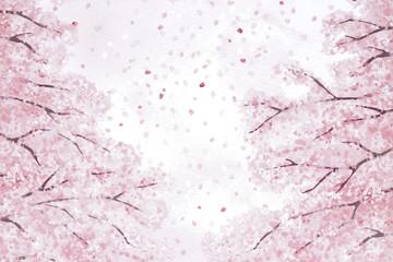 背景 桜 桜吹雪