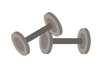GYM dumbbells isolated