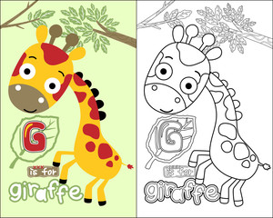 vector of coloring book or page with funny giraffe cartoon