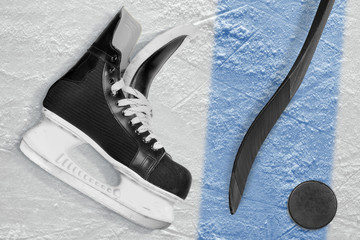 Hockey stick, skates, puck and blue line