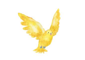 黄色の小鳥 水彩イラスト