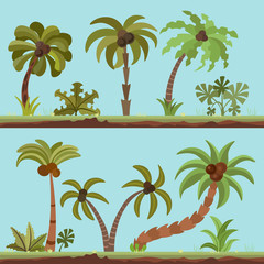 Vector collection of palm trees, cartooning flat style. Palm tree set in summer tropical colors. Green palms isolated on blue background. Lush palm resort collection with bushes, leaves, tropical