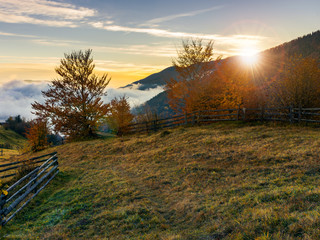 sunrise in carpathian rural area. fence and trees along the hill. cloud inversion in the distant valley