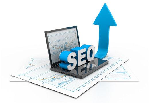 Search engine optimization growth chart