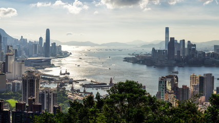 Fototapete - Hong Kong City skyline before sunset