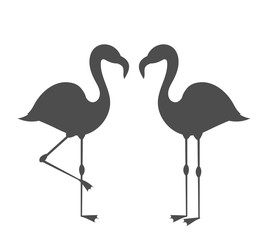 Couple of flamingos silhouettes