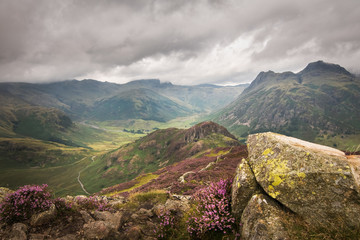 Crazy view into great and little langdale with heather hillside and cloudy sky Lake district England