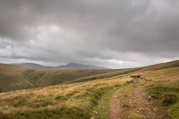 Dirt road in yellow grass mountains landscape with moody sky