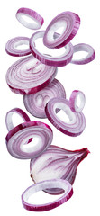 Red onion rings on white background. File contains clipping path.