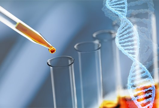 Oil test analysis beaker bio bio diesel