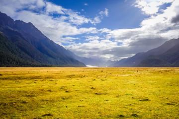 Keuken foto achterwand Oceanië Fiordland national park, New Zealand