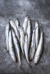 Fresh caught anchovies on tray