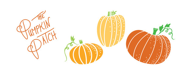 autumn pumpkin illustration of cute orange halloween pumpkins with vines and the handwritten text pumpkin patch