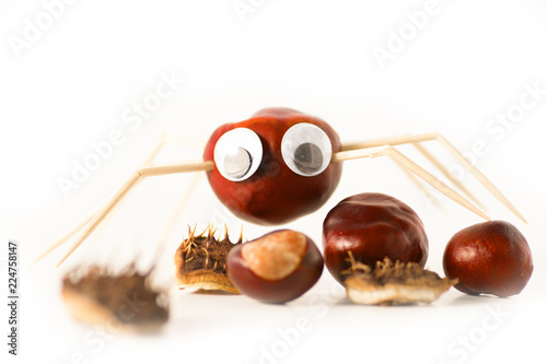 Basteln Mit Kastanien Im Herbst Stock Photo And Royalty Free Images