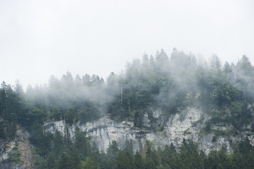 Aluminium Prints Morning with fog Schweizer Berge im Nebel