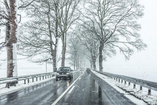 Allee im Winter mit Gegenverkehr