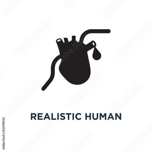 Realistic human heart icon  Simple element illustration