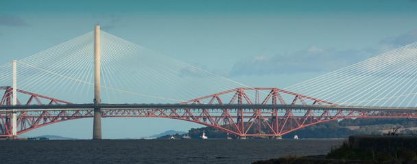 forth bridges illuminated