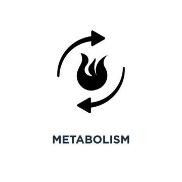 metabolism icon. burn concept symbol design, vector illustration