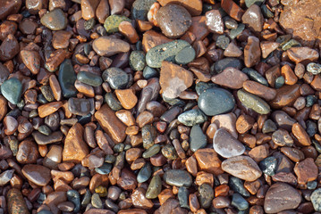 Colorful wet pebbles and rocks background abstract