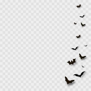 Flying bats on transparent background. Vector.