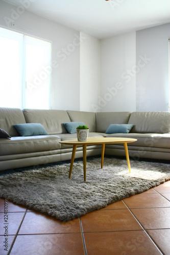 canapé gris en cuir rt table basse,salon moderne\