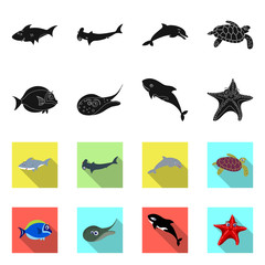 Isolated object of sea and animal sign. Collection of sea and marine stock symbol for web.