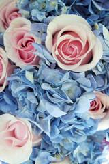 Foto auf Acrylglas Blumen Pastel flowers For the background