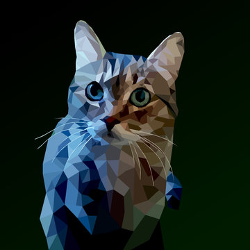 cat low poly on a dark background