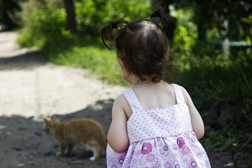 Little girl from the back plays with a kitten